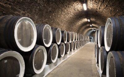 Divoora Wine il nuovo vino delivery a domicilio
